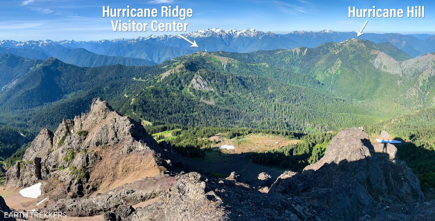 Hurricane Ridge Photo