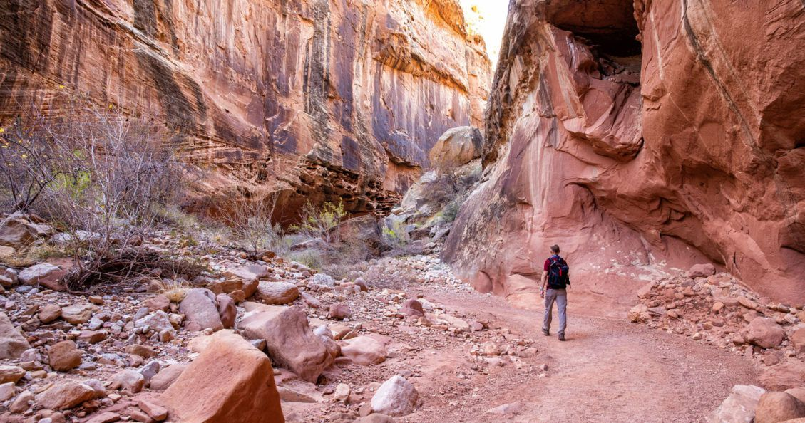 One Day in Capitol Reef Hikes