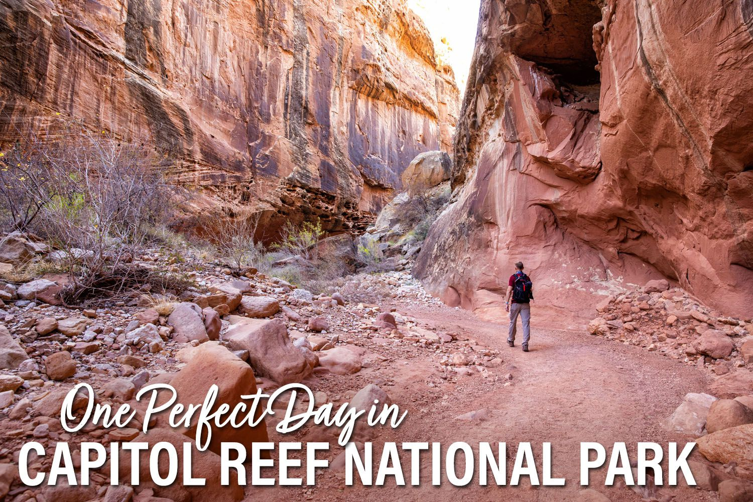 One Day in Capitol Reef