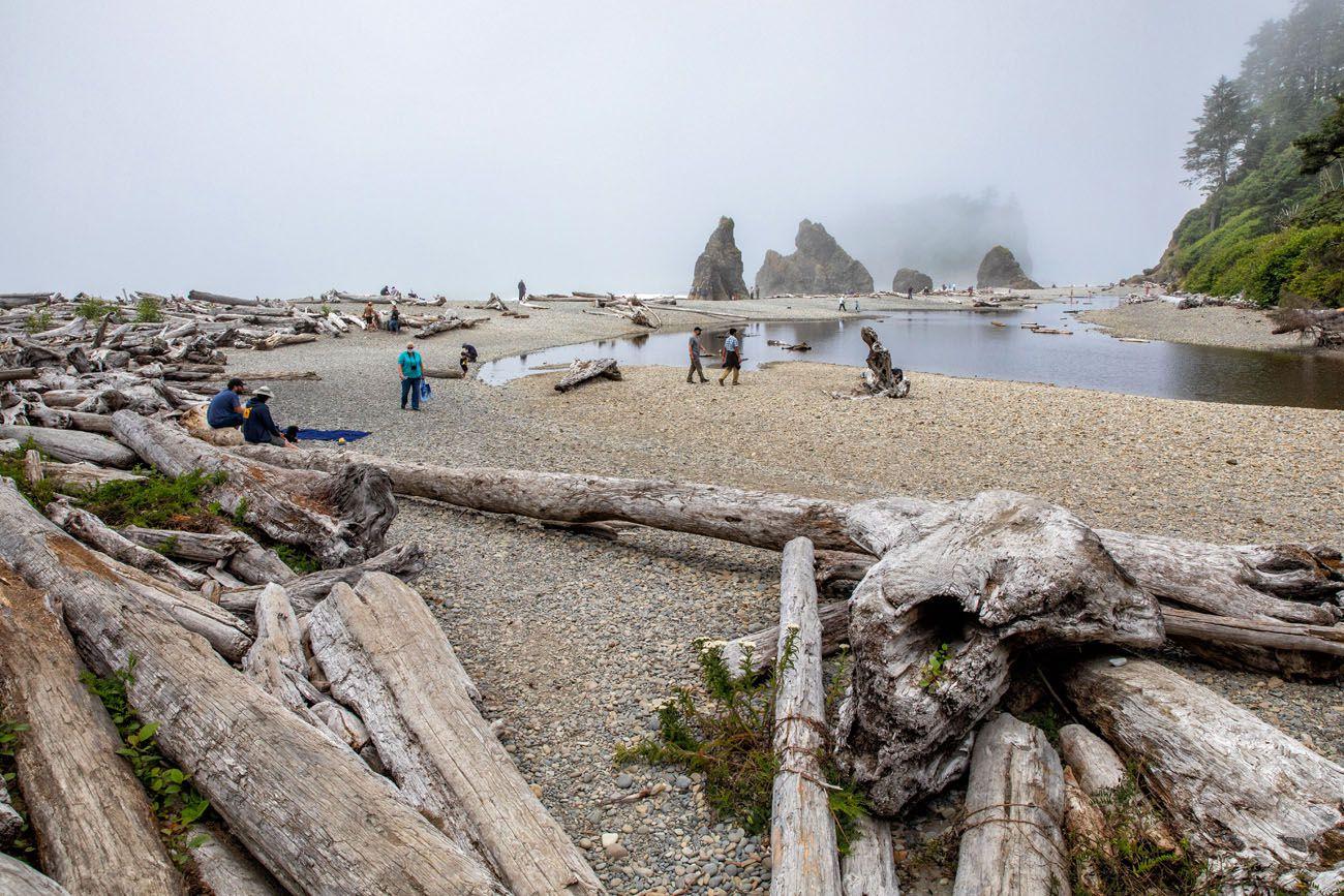 Ruby Beach with Fog