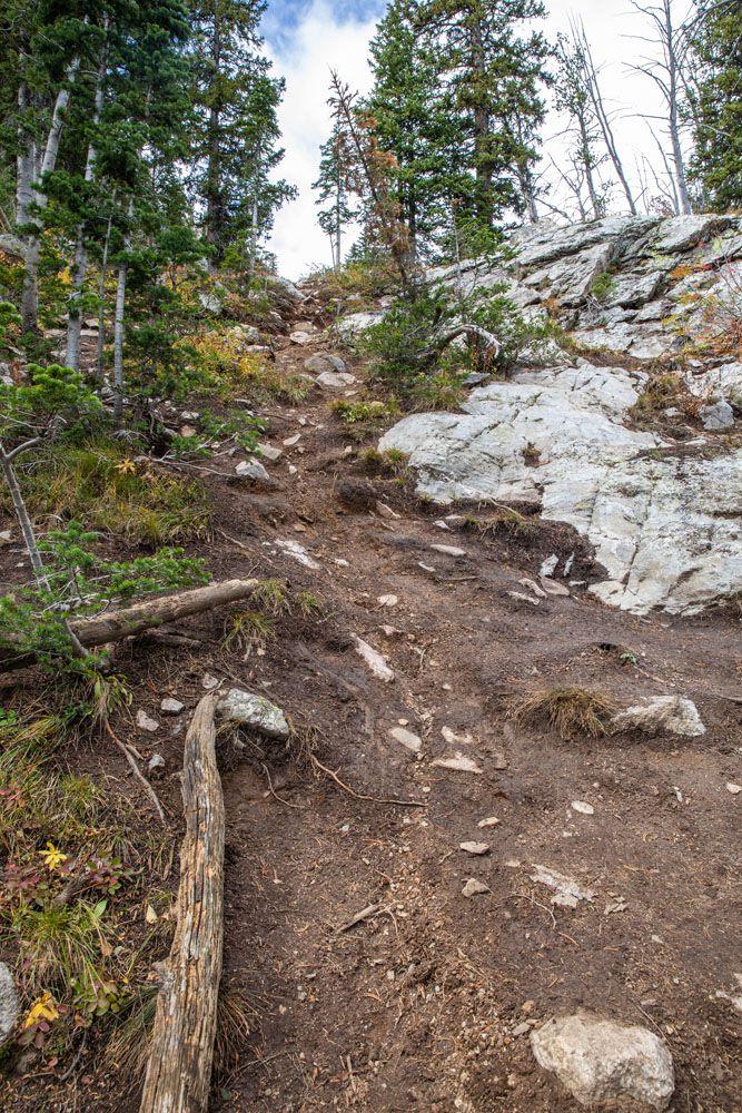 Trail to Delta Lake