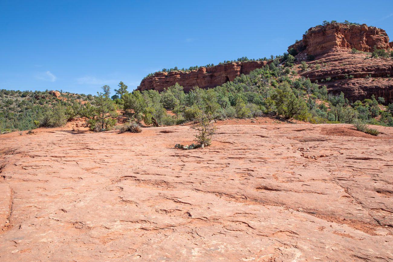 Across the Plateau