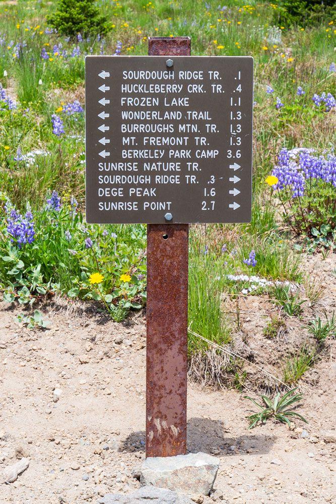 Mount Rainier Hiking Sign