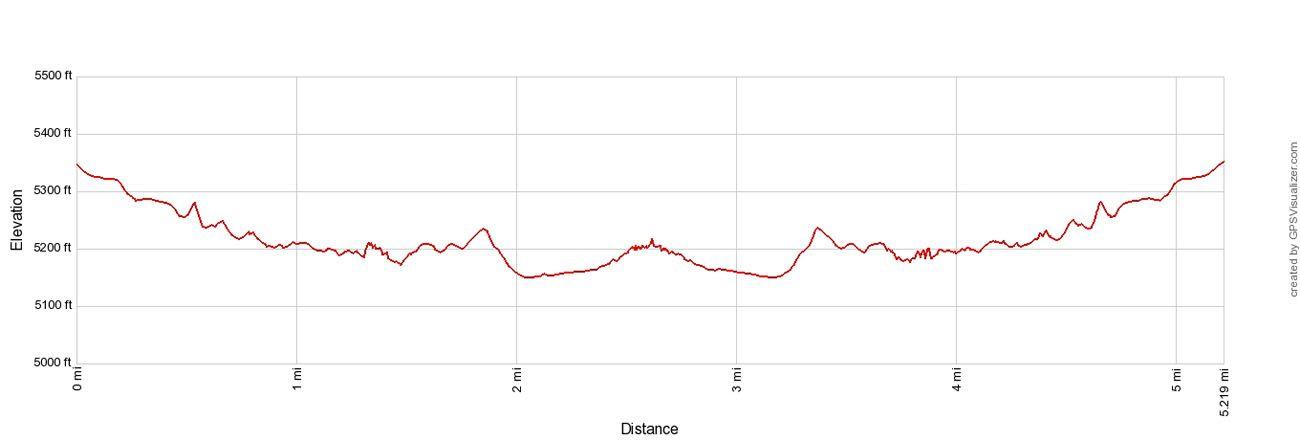 Zebra Slot Elevation Profile