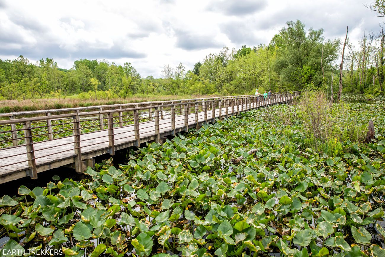 Beaver Marsh things to do in Cuyahoga Valley