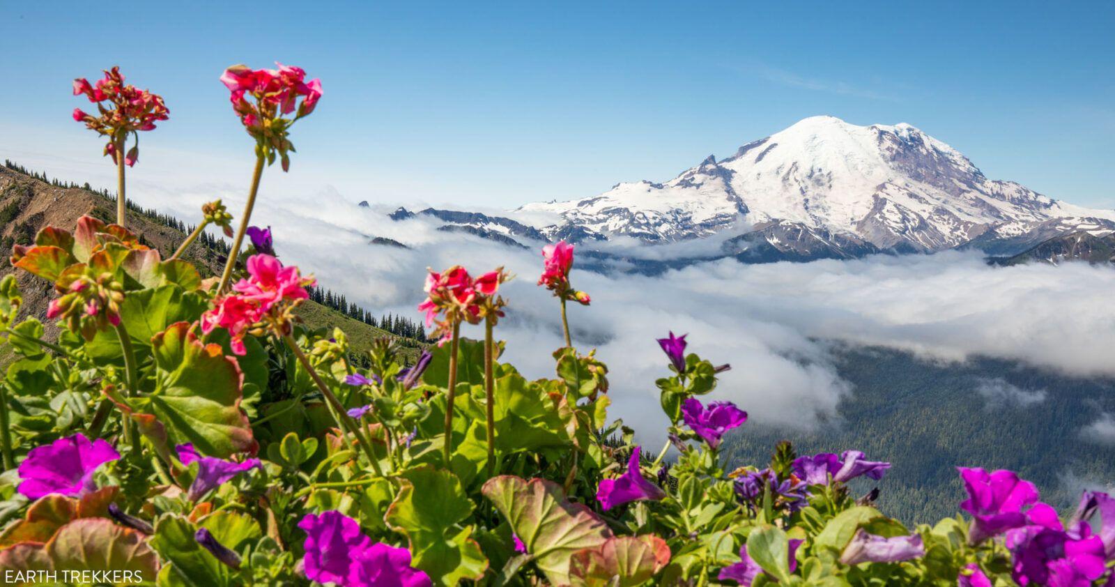 Mount Rainier Travel Guide Itinerary