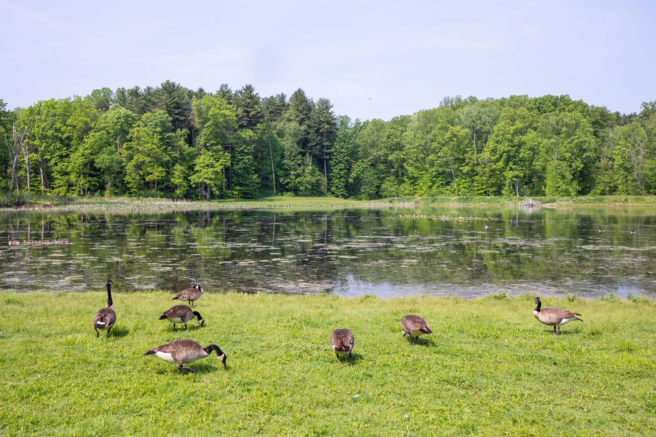 Kendall Lake one day in Cuyahoga Valley