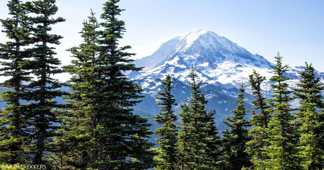 Mount Rainier Photo