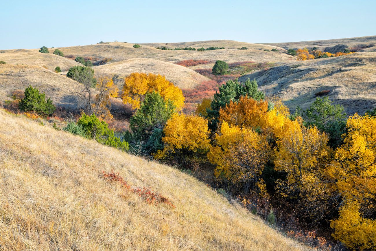 Sage Creek Wilderness Badlands