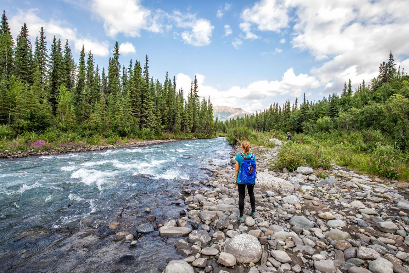 Best Hikes in Denali