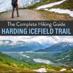 Harding Icefield Hike Kenai Fjords
