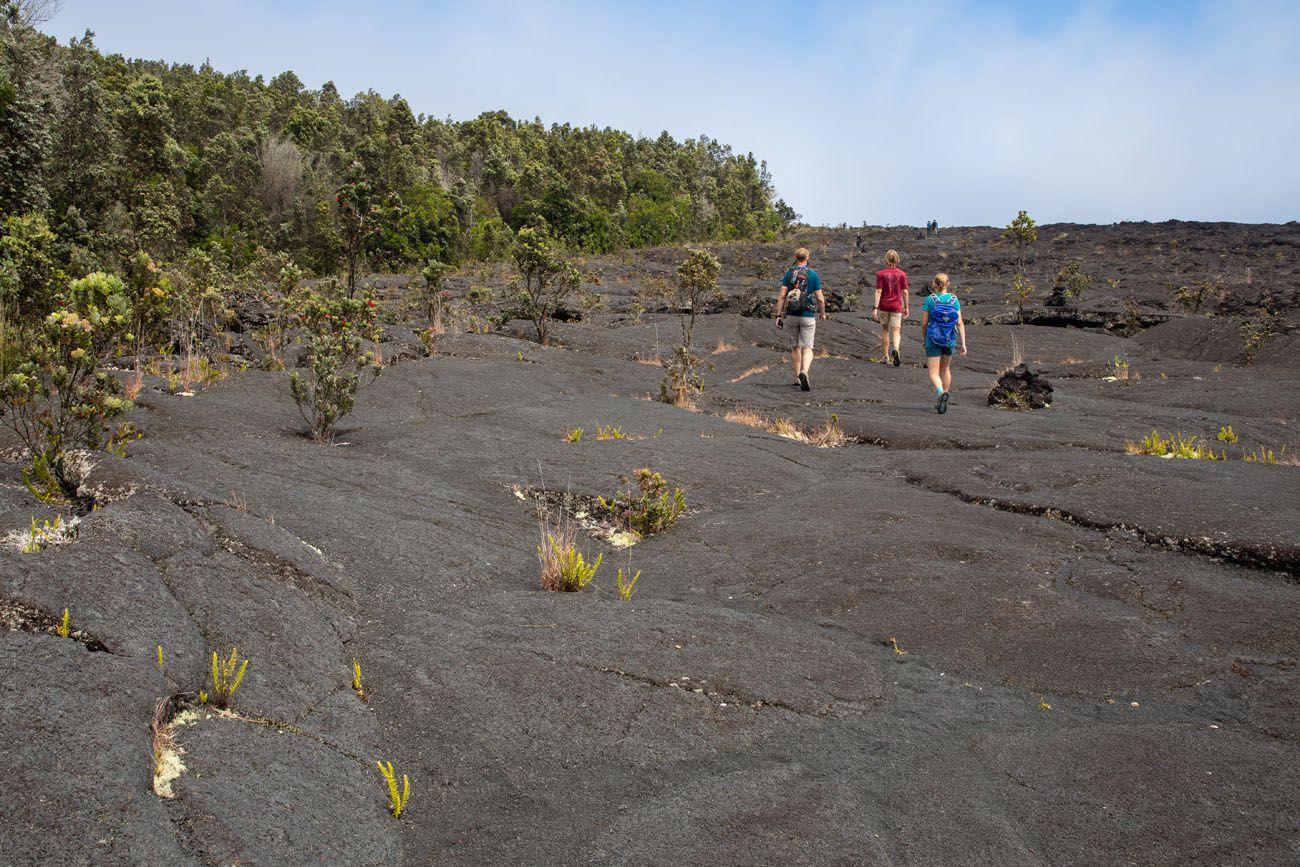 Hawaii Volcanoes Hike things to do in Hawai'i Volcanoes National Park