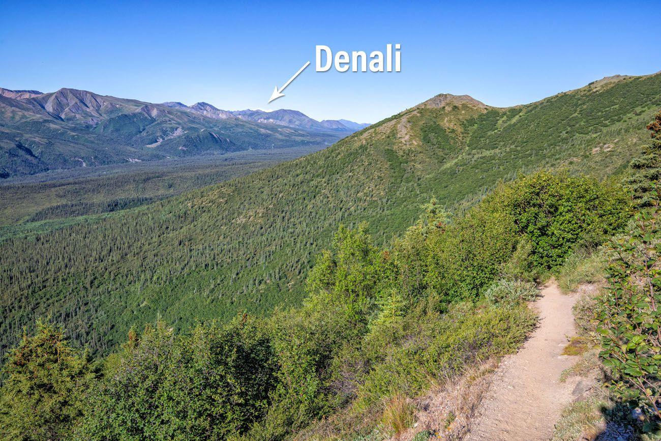 Healy Overlook Trail Photo