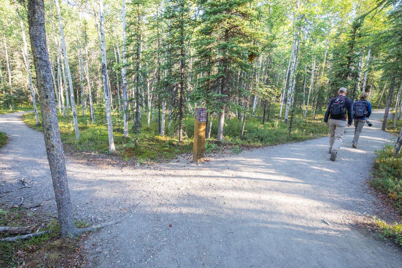 Healy Trail Split