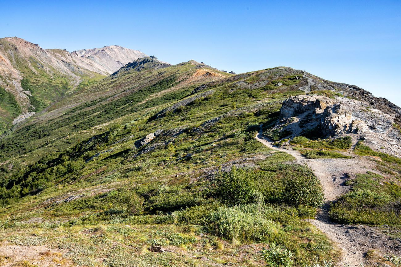 Hiking Trail Denali