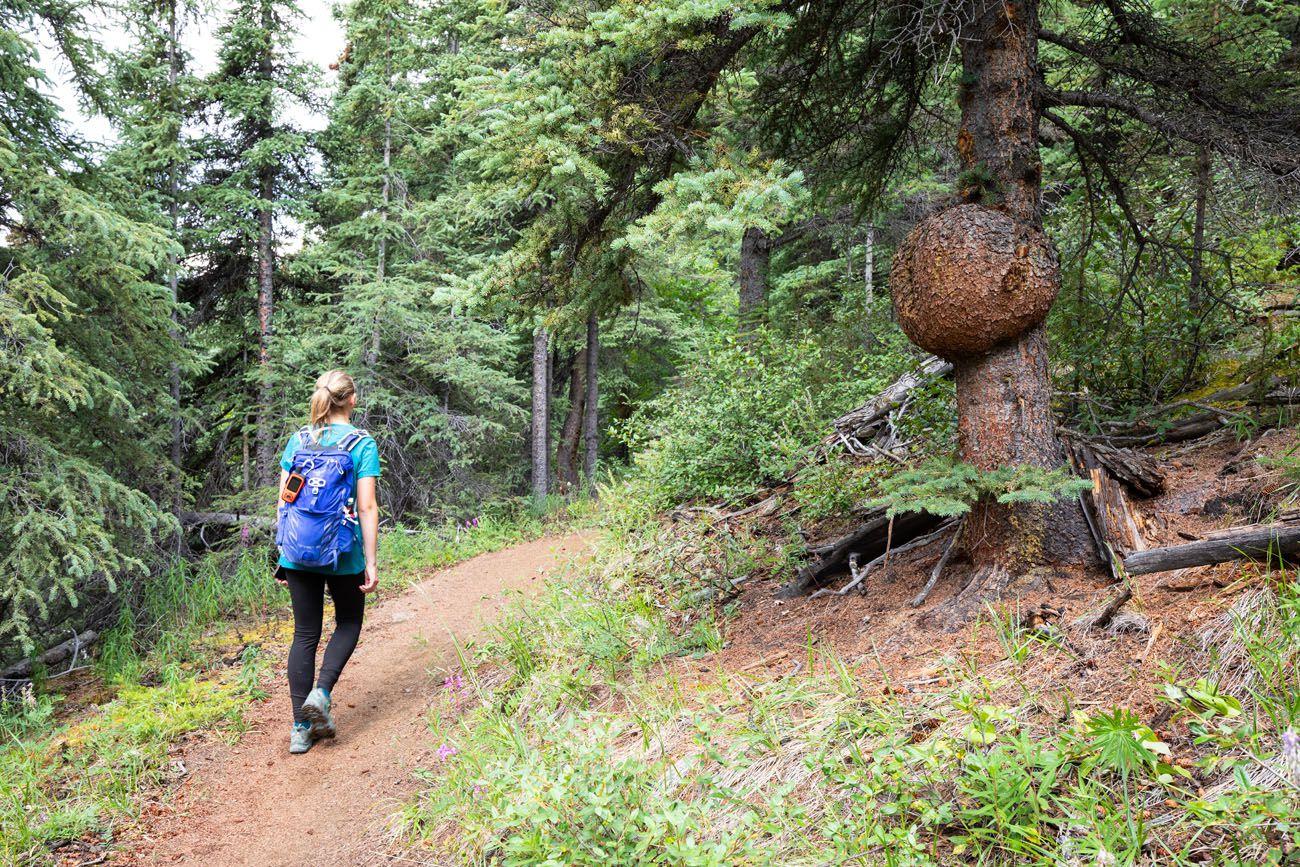 Kara on the Trail