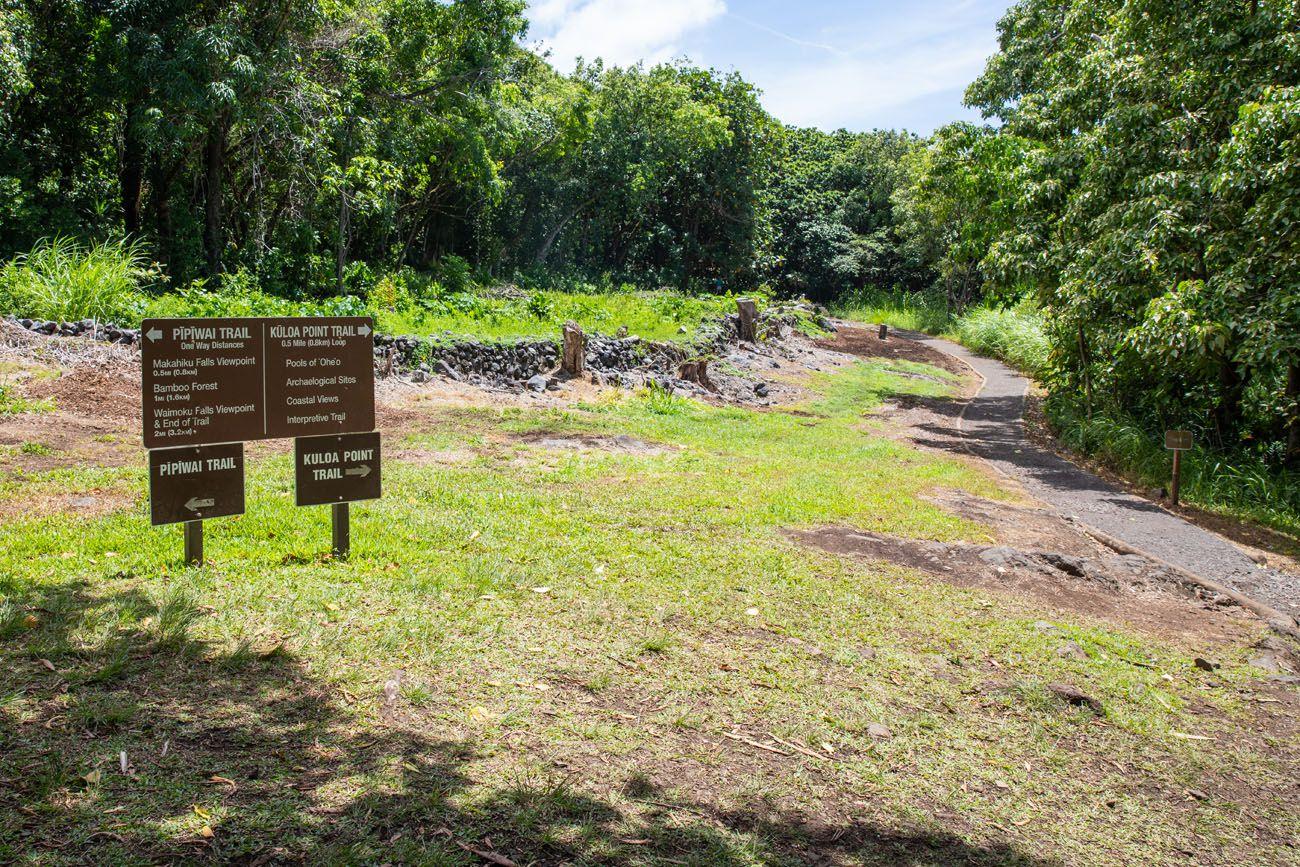 Pipiwai Trail Split