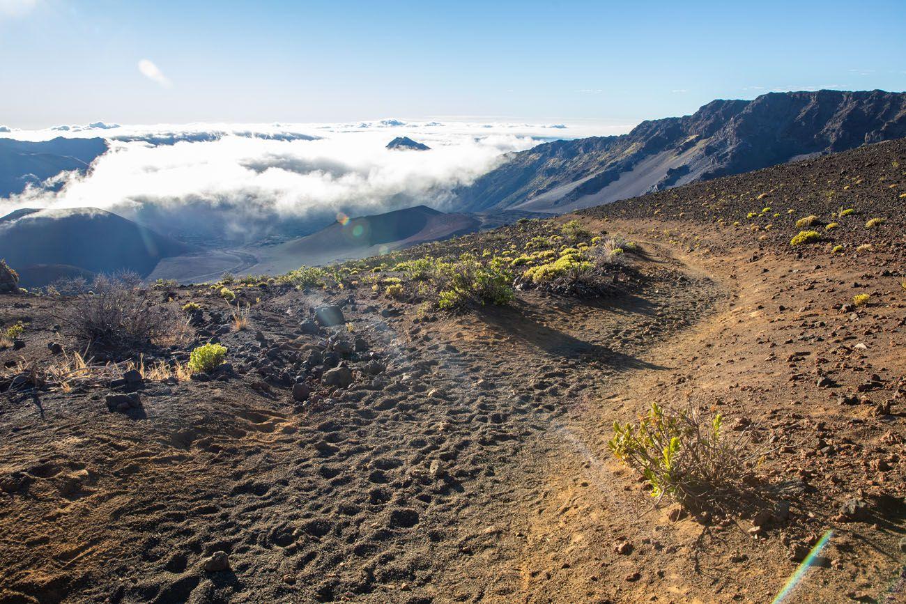 Sliding Sands Trail Guide