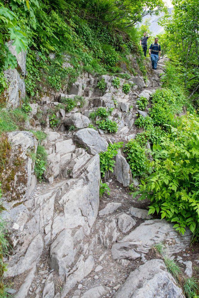 Tough Trail