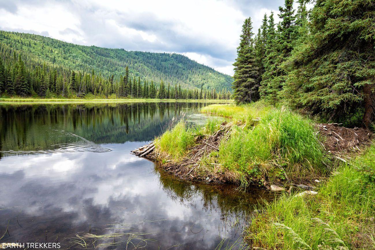 Triple Lakes Trail Lake 1
