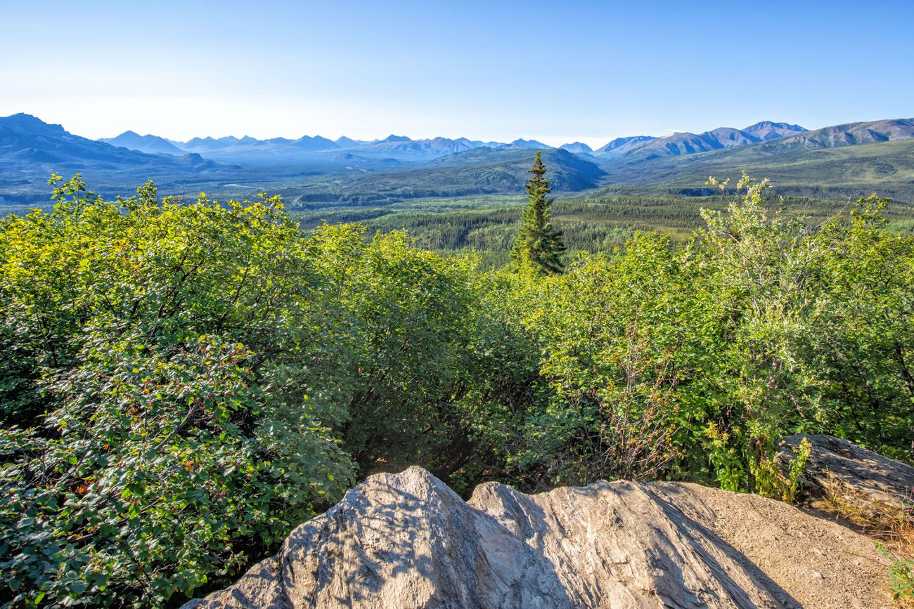 View from Healy Trail