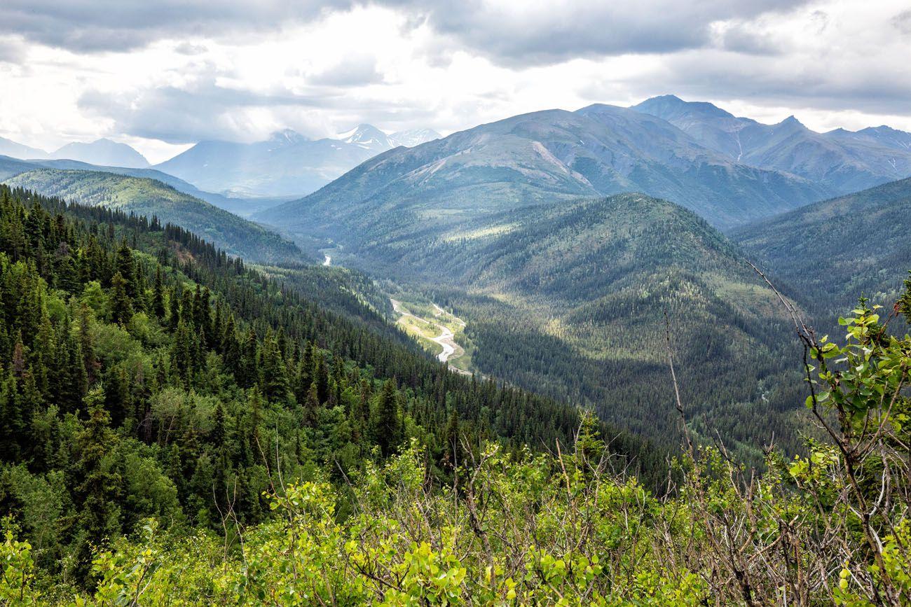 View of Denali Triple Lakes Trail