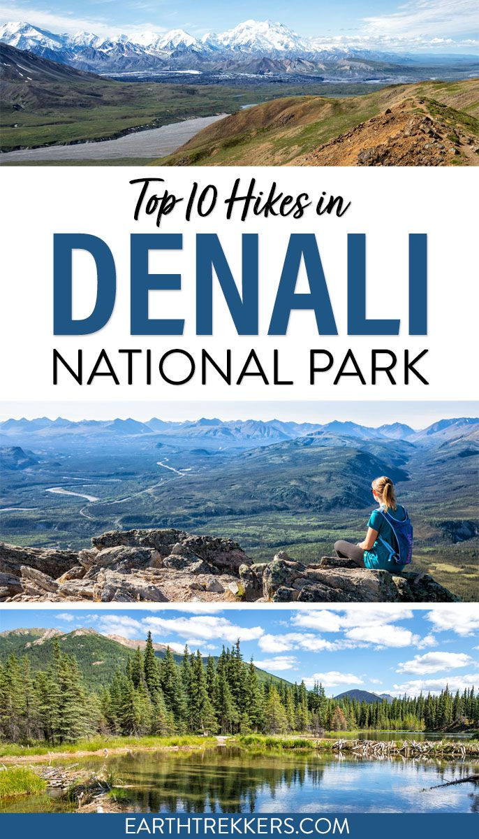 Best Hikes Denali National Park