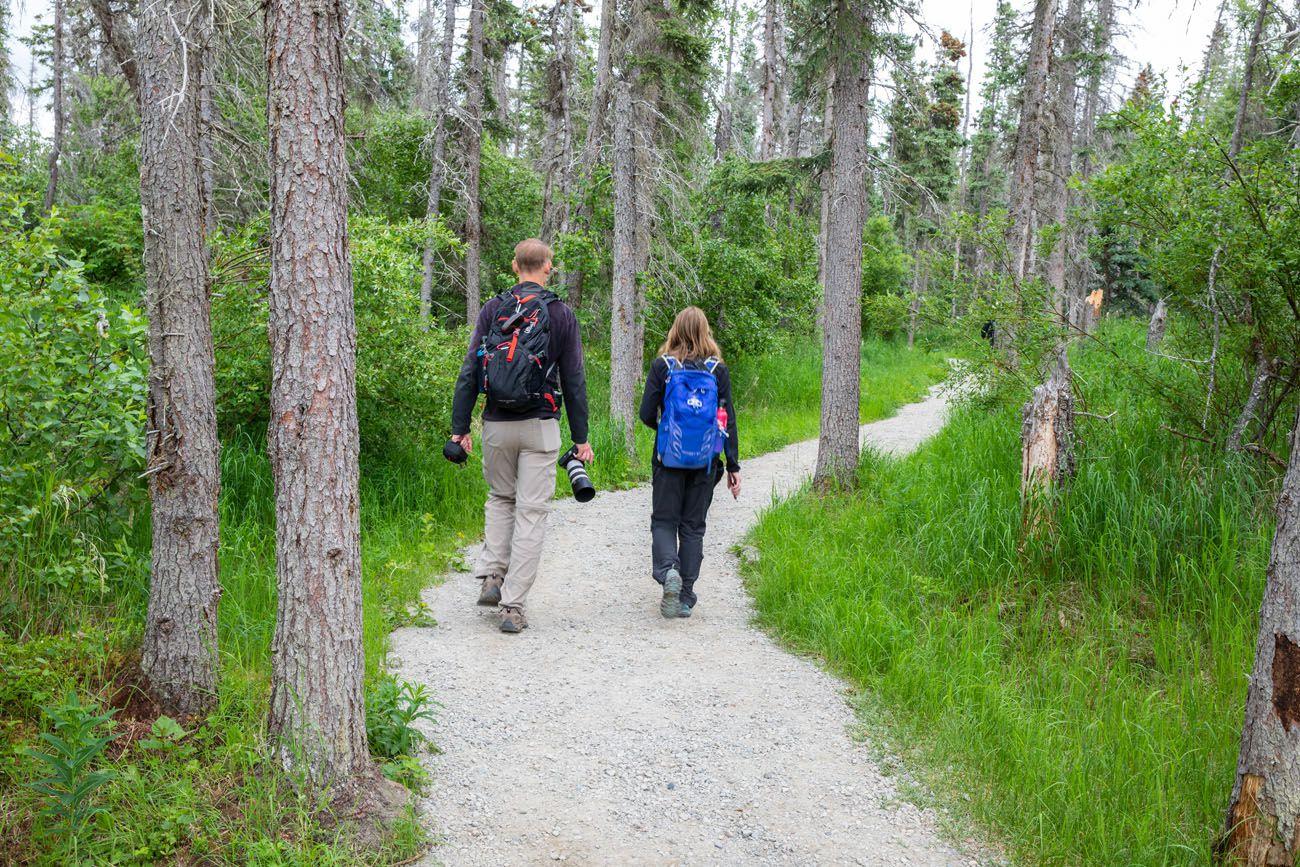 Brooks Falls Trail July