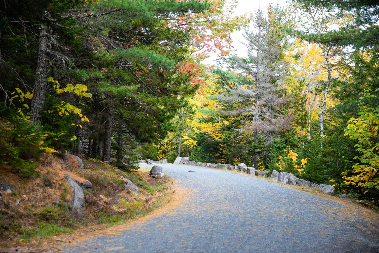 Carriage Road Acadia