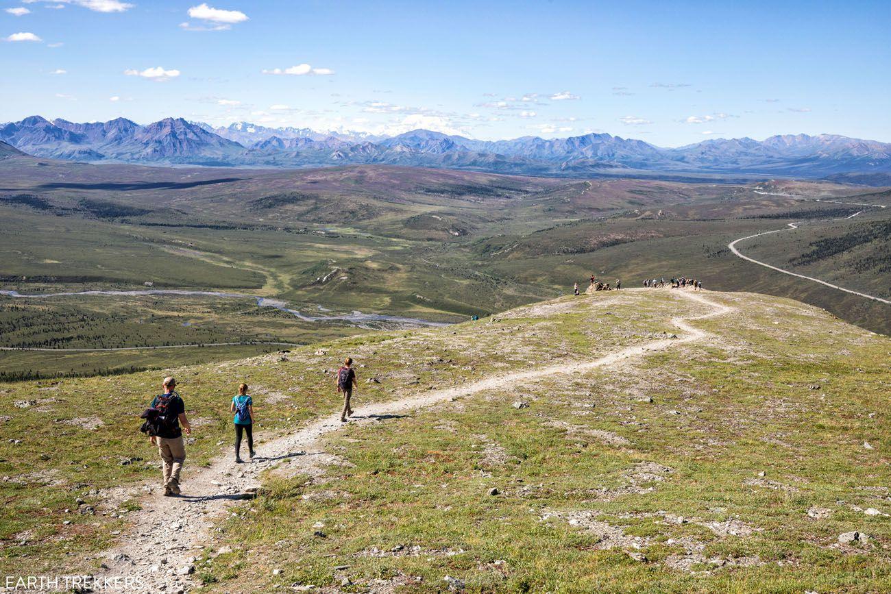 Hikes in Denali National Park Photo