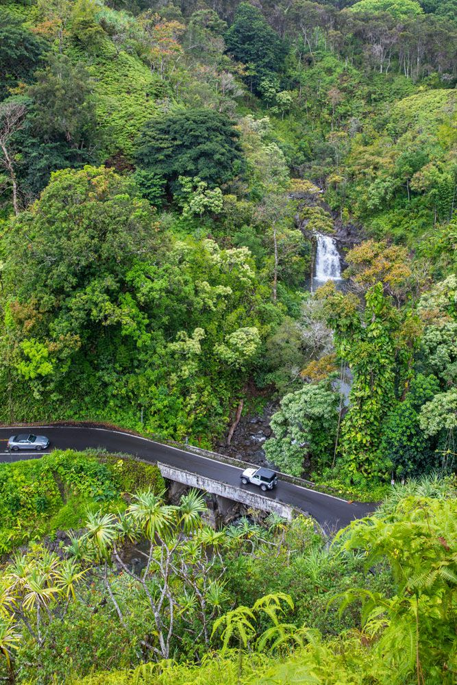 Road to Hana View