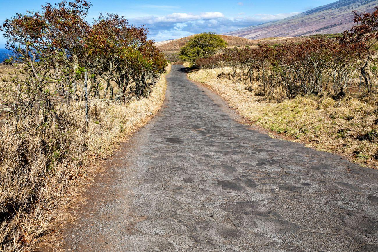 Rough Road Hana