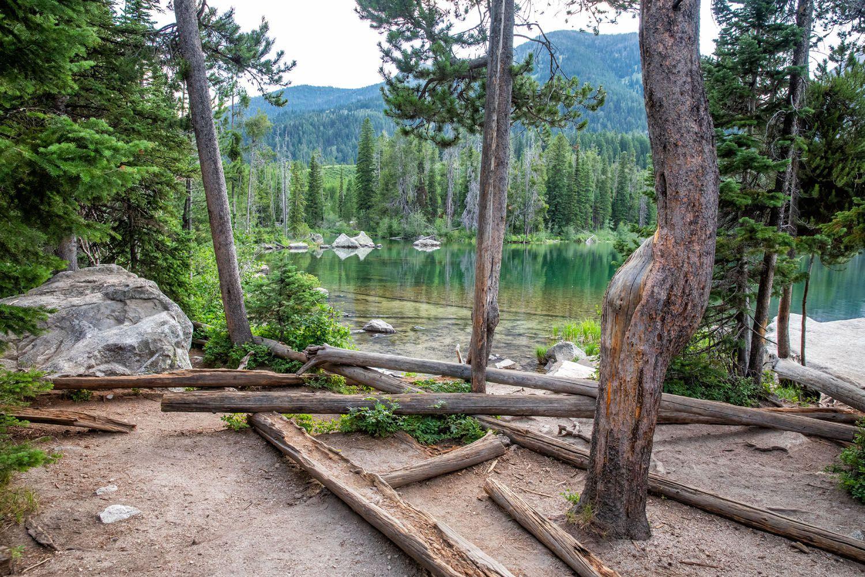 Taggart Lake Shoreline