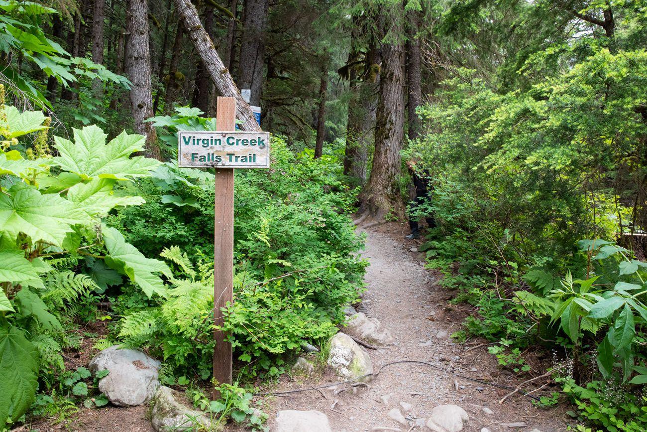 Virgin Creek Falls Trailhead