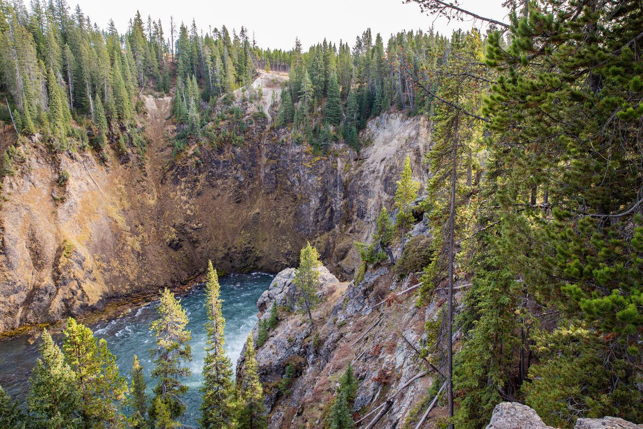 Brink of the Upper Falls Viewpoint Grand Canyon of the Yellowstone