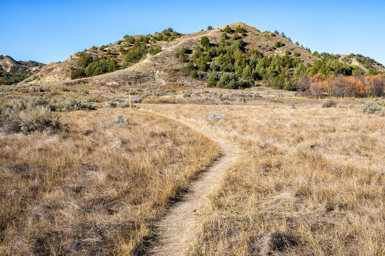 Ekblom Trail Guide