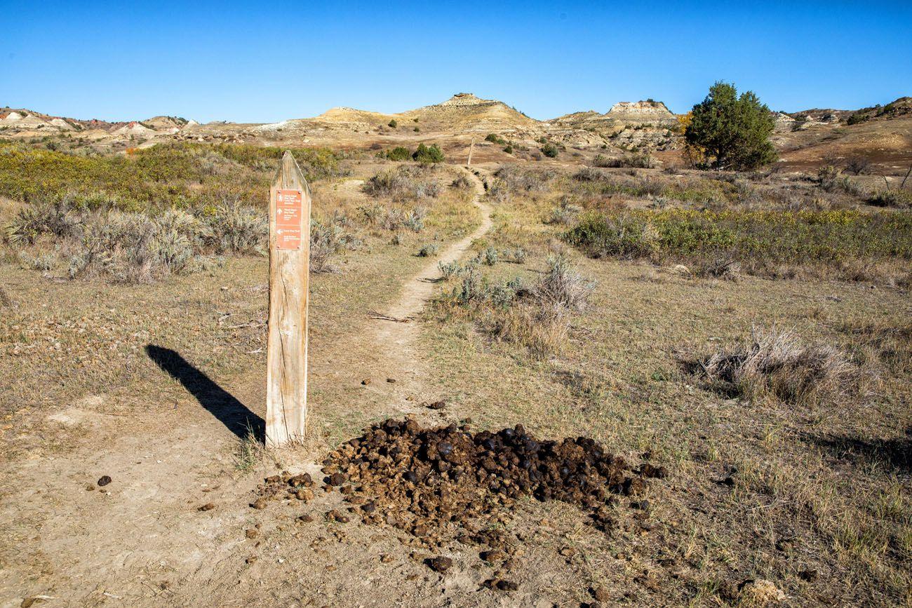 TRNP Trail Marker