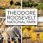 Theodore Roosevelt National Park South Unit